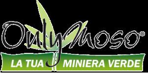 OnlyMoso_logo